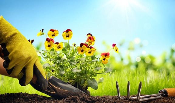 Trädgårdsutrustning